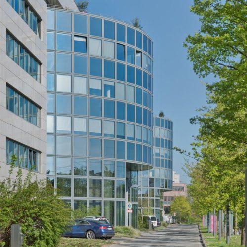 Aculeum Frankfurt